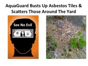 Asbestos Redo II